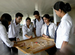 Students Playing Carom Board